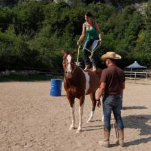 Corso Horseman